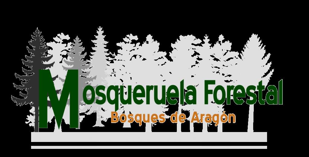 producción de pellets y astilla en Aragón