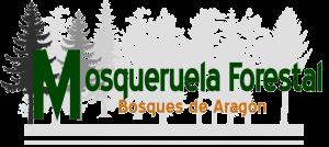 mosqueruela-forestal-biomasa