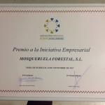 Premio a la iniciativa empresarial 2017